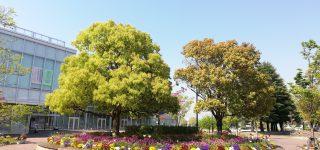 西大寺緑化公園にてリフレッシュ。GWも頑張ります!